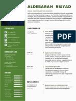 CV Template 5.docx
