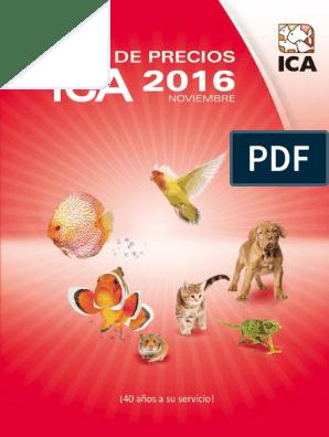 ICA KIS50 Kit para Tortuguera de Cristal Isla