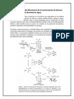 Cinética y Estudio Del Mecanismo de La Isomerización de Glucosa Usando Una Base de Bronsted en Agua