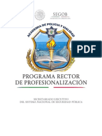 programa rector de profesionalizacion