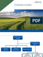 BUNGE - Estrutura Pessoal - Qualidade e Produtividade SB 2012 - Rev 05 PDF