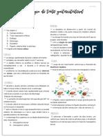embriologia digestorio