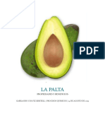 Palta y Beneficios