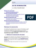 RA3 Sistemas Numéricos.pdf