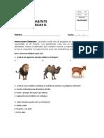 PRUEBA DEL HABITATS CIENCIAS.docx