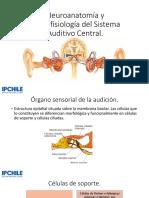 Neuroanatomía y neurofisiología del Sistema Auditivo Central.pptx