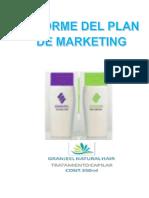 Ap13 Informe Del Plan de Marketing Granjeel