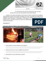 Chile Inserto en Los Procesos de Industrialización Siglo XIX