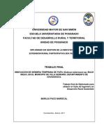Paco Mariscal Maruja Trabajo Final Diplomado Gierp 2da Version