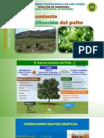 fertilizacion en palto I forum.pptx