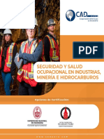 Seguridad y Salud Ocupacional en Industrias Mineria e Hidrocarburos