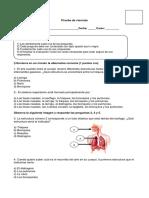 Prueba de Ciencias Del Sistema Circulatorio, Respiratorio y Nutrientes