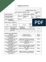 Formato de Curriculum Vitae - Copia