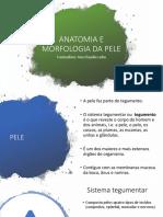 Anatomia e Morfologia Da Pele