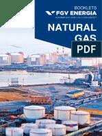 Caderno FGV Energia Gas Natural ING