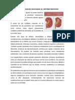 Enfermedades Renales Asociadas Al Sistema Nervioso
