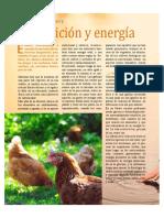 Nutrición y energia