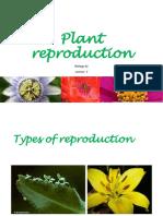 Lec7. Plant Reproduction
