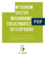 How to Grow Oyster Mushrooms the Ultimate Step by Step Guide eBook