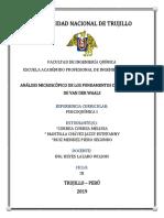 ANALIS MICROSCOPICO FINAL.docx