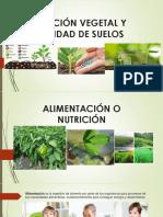 Nutrición Vegetal y Fertilidad de Suelos