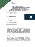 DIAGNOSTICO ORGANIZACIONAL.docx
