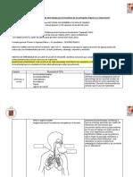 Taller Diseño Recurso de Aprendizaje Órganos Lunes 29