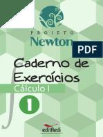 Caderno Exercicios Calculo 1 - Vol 1 - Projeto Newton