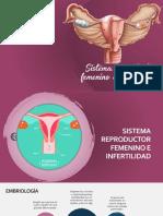 Sistemareproductorfemenino_subir.pdf