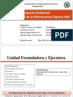 Proyecto Ambiental, Manejo Integral de La Microcuenca Caplina Alta PPT