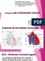 Primary%3Abluetooth%2F12.Sindrome Coronario Agudo