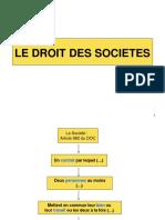 LE DROIT DES SOCIETES.pdf