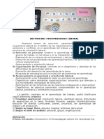 Gestion Del Psp Laboral