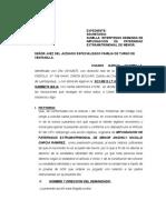 Demanda Determinacion Paternidad- Garcia Chambia