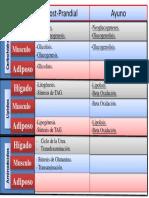 Cuadro de Integracion al Metabolismo (Prepa Justo).pdf