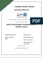 Max New York Pinky