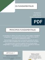 Principios fundamentales.pptx