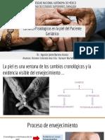 Cambios Fisiologicos en La Piel Del Paciente Geriátrico