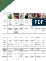 Tabla Descripcion Minerales Silicatos-3Daniel Barahona