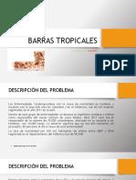 Antonella Cianci - Barras de Cereales, Frutos Secos y Frutas Tropicales