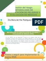 Gestión Del Riesgo Metodologia de Identificacion de Peligros y Evaluación de Riesgos