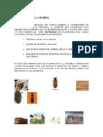 proteccion de la madera