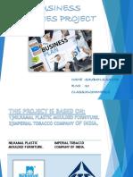Business Studies Project 10