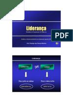 Apresentacao4_Lideranca