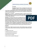 ANALISTA DE SISTEMA.docx