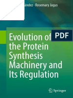 Evolution of the Protein Synthesis Machinery