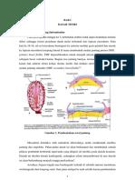 OSLER-dasar teori (embriologi jantung + ToF)