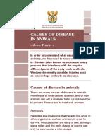 animal diseases.pdf