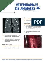 clinica veterinaria de pequeños animales num2-2012.pdf