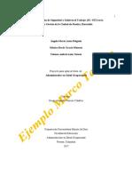 Ejemplo Marco Teórico.pdf